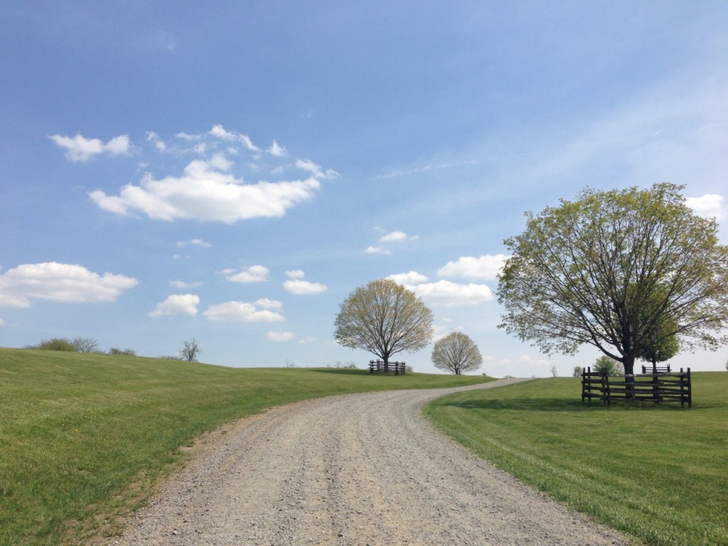 Driving up to Vintage Ridge feels like you're headed to a retreat