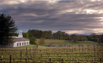 Barboursville Vineyards, in Barboursville, Va (Source:  New York Times)