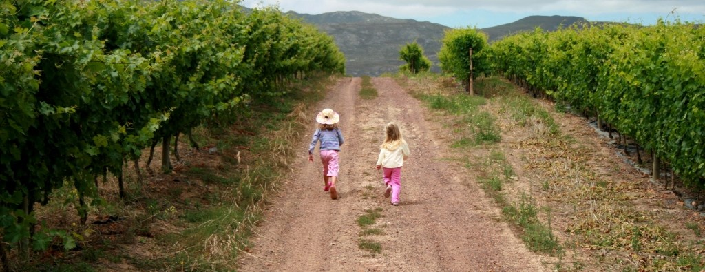 Virginia is home to a variety of kid-friendly wineries.  (Photo Courtesy:  hermanuswineroute.com)